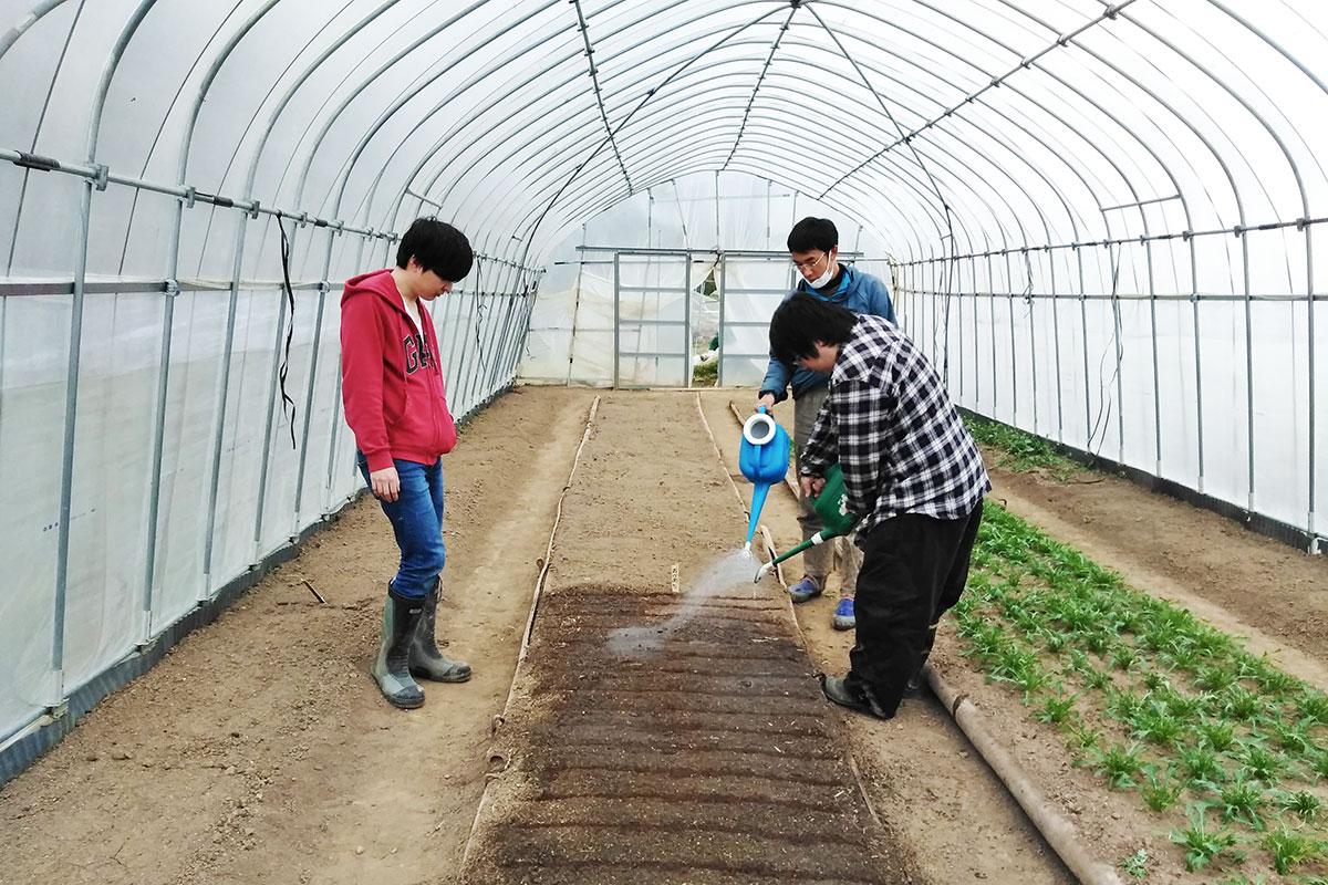 若者支援シェアハウス「人おこし」|農家ボランティア
